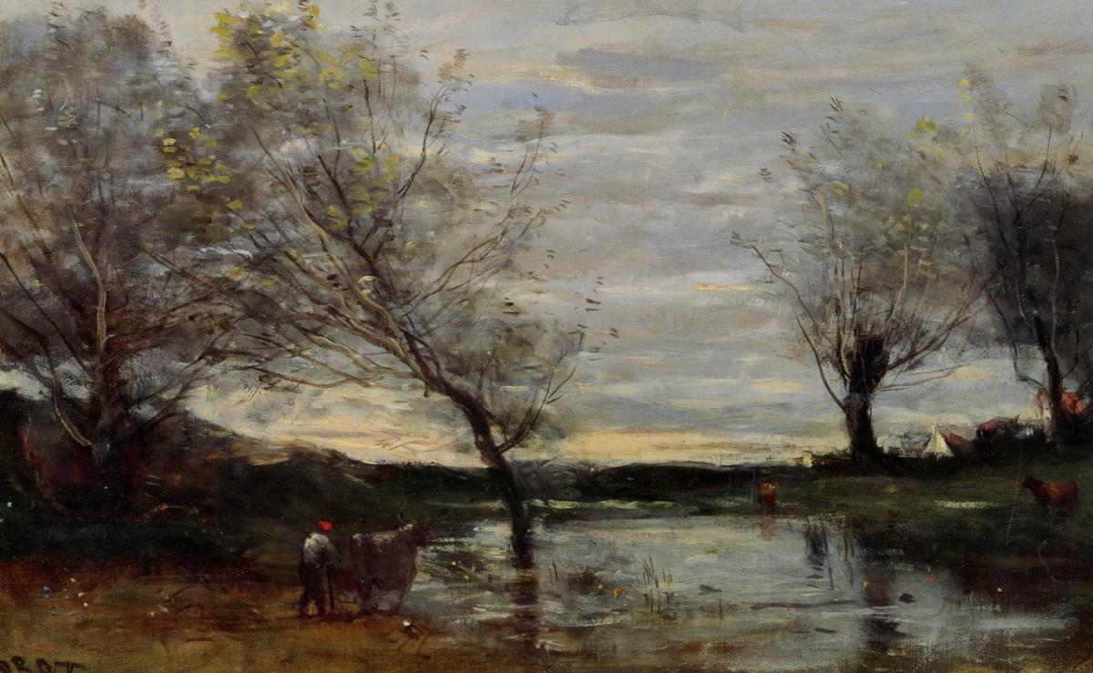 Marshy pastures